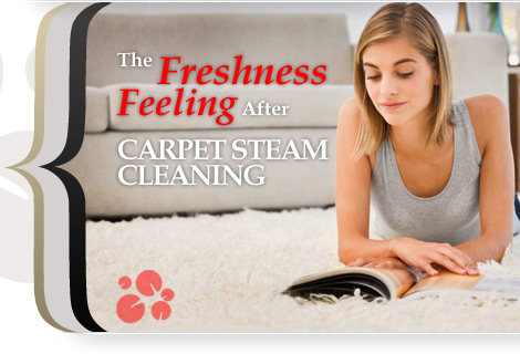 Freshest Carpet Steam Cleaning in Bellevue